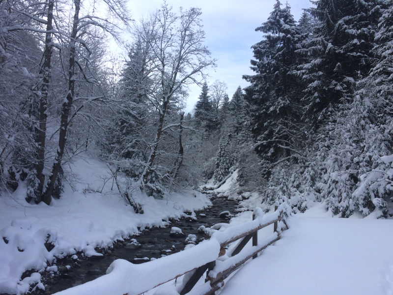 Bildbrugg winter